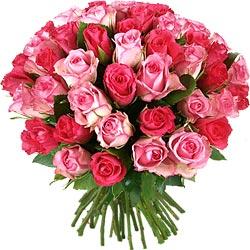 35.00 € : OFFRE EXCEPTIONNELLE ! 10 ROSES EN PLUS :50 roses au lieu de 40 pour 29 € seulement !60 roses au lieu de 50 pour 35 € seulement !Douces roses !Couleur romantique par excellence, le rose se décline avec élégance dans ce camaïeu à la fois tendre et intense. Vous tomberez sous le charme de ce très joli bouquet de roses fraîches et naturelles, plein de délicatesse.