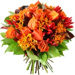 Le Bouquet de la Semaine