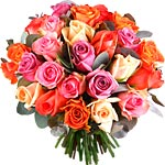 Belles Roses Multicolores 