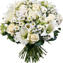 65.00 € : Un grand bouquet élégant et généreux !Nos fleuristes ont séléctionné de belles fleurs élancées pour créer une magnifique composition naturelle. D'opulentes roses 'Avalanche', de majestueux lys au parfum capiteux, de délicats lisianthus se mélangent avec légerté aux asters, en forme d'étoile qui viennent étoffer ce ravissant bouquet de saison.