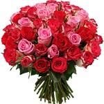Cliquez sur le bouquet Rose Forever pour l'agrandir